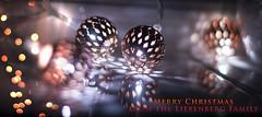 Merry Christmas from the Liebenbergs (mliebenberg) Tags: christmas 2016 xmas jesusbirth bokeh peace joy goodnews