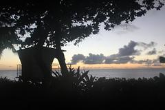 IMG_1457 (michelleingrassia) Tags: banzaipipeline northshore oahu hawaii hi sunset beach