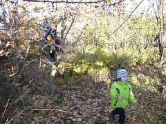 Tree climbing with Edgar and Kevork (RickyOcean) Tags: armenia noragavit edgar kevork treeclimbing