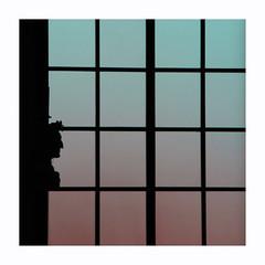 De l'un mane l'autre (hlne chantemerle) Tags: fentre intrieur sculpture profil carrs lumire rose vert ombre noir window indoor outline squares light pink green black shadow