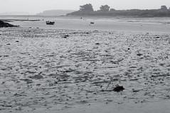 Bretagne (Yann OG) Tags: morbihan bretagne brittany breton france franais french nb bw noiretblanc blackandwhite mer sea sable sand brume 50mm pcheur fisherman monochrome saintcado pluie rain