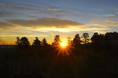 Peek-A-Boo! (mohsenil@ymail.com1) Tags: sunrise daybreak dawn firstlight chautaquapark flatirons mountains