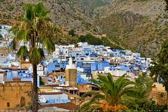 On the hill of Rif Mountain (T Ξ Ξ J Ξ) Tags: morocco chefchaouen sefasawan d750 nikkor teeje nikon2470mmf28 blue city kasbah