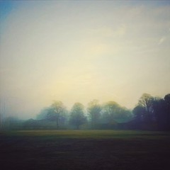 A new dawn (Andy^C) Tags: mist iphoneart autumn iphone landscape iphoneography cameraphone nature mobilephotography fog rural iphone6 tunbridgewells
