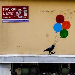 Bir balon kadar özgür