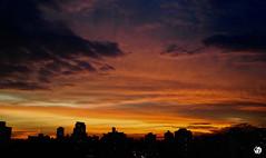 Por do Sol  /  Sunset  /  São Paulo, Brazil (AndreSF_Fotografia) Tags: céu sky pordosol sunset outdoor nuvens clouds horizonte skyline entardecer anoitecer