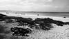 1 (Kaver_) Tags: bw beach ocean capoverde chaves ricoh 28 grd ricohgrd grd1