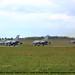 German Air Force Tornados TaktLwG 33