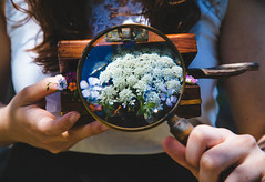 the explorer (Yoma) Tags: flowers nature glass girl wooden hands soft box magnifying