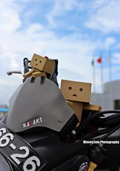 DANBO (WovenTam) Tags: honda toys danbo danboard minidanboard