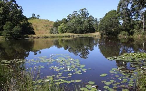 Talarm NSW
