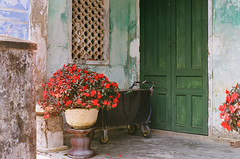 (obnimakina) Tags: door flowers red house green film colors southeastasia mint vietnam hoian oldhouse porch indochina pentaxmx hian
