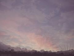 28 days (Lady_Heron) Tags: life morning blue light sky orange sun white black nature colors clouds landscape grey day time live air dream morningglory multicolor morningsun timepasses