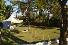 DSC_0079 (Clube de Compo Hotel Fazenda para Ces) Tags: agility jundia estimaco clubedecompo clubedecompohotelfazendaparaces hotelfazendaparacesituclubedecompo