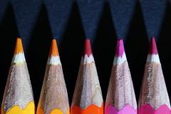Takin' Art this Year (Ben Wightman) Tags: macro backtoschool colouredpencils watercolourpencils penciltips macromondays