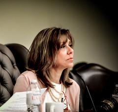 Sen. Huffman Chairing HT Committee