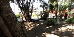 Mimetismo (Rctk caRIOca) Tags: rio de janeiro centro praa xv