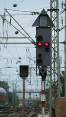 Signallicht (kf_photographie) Tags: rot photography fotografie zug bahnhof hauptbahnhof farbe hbf ampel dortmund leuchtend kfphotographie zugampel