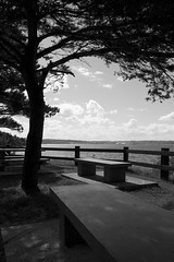 picnic area (Elxir) Tags: light sky blackandwhite tree clouds fence bench table picnic quebec saguenay fjorddusaguenay parcnationaldusaguenay