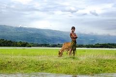 The Cowboy got Attitude (nzmsskb) Tags: life mountain color green nature landscape photography landscapes nikon exposure photographer natural sylhet bangladesh