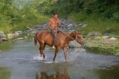 _DSC2487 (fotoliber) Tags: horse caballo cuba santodomingo granma d600
