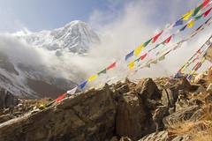Annapurna Base Camp, Nepal (Matt-Zimmerman) Tags: blue nepal camp sky clouds trek flags base annapurna sanctuary himalayas 2012 ghandruk westernregion