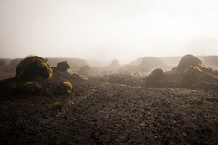 Peat Hags (bob golden) Tags: morning ireland mountains landscape early hills peat bog wicklow upland hags