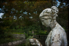 In the garden of good and evil (s.nishio) Tags: ky louisville photomorphis analogefexpro whitehallhouseandgarden