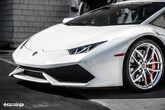 Lamborghini Newport Beach  Supercar Saturday (carninja) Tags: saturday huracan bugatti lamborghini supercars lambo carninja aventador lamborghininewportbeach lamborghinihuracan
