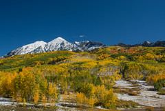 Ruby Range in Full Fall Glory (Nancy King Photography) Tags: aspens colorado fall keblerpass landscape leaves nature rubyrange