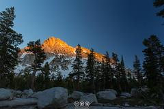 Sunset on Ragged Peak (au_ears) Tags: california tuolumnemeadows 2016 yosemite raggedpeak sunset