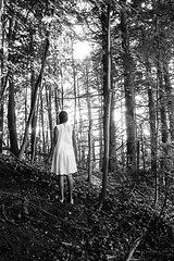 Do you ever go where your fears live? In dark forests, and deafening silence. Where bare feet is a requirement. Where being lost is a given. Do you know that place? It's your head. (jev) Tags: bw leicasummiluxm35mmf14asphfle zeissikonzm analog blackandwhite buyfilmnotmegapixels bwn ecology ecosystem environment environmentalism faceless fears film filmcommunity filmfeed forest ishootfilm kodakfilm kodaktmax400 land minimal monochrome moodygram nature scarystories scenery