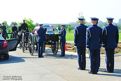 ARL_2474-s (lauren3838 photography) Tags: lauren3838photography laurensphotography nikon d700 funeral arlington arlingtonnationalcemetery military airforce caisson horses usa flag veteran casket cia pilot va virginia cemetery soldiers burial