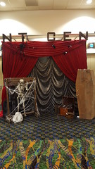 20161029_130544 (FestivitiesMN) Tags: halloween halloweendecor ti casino treasure island backdrop coffin spider webs ruched grey skeleton 2016