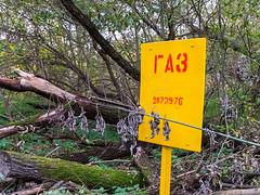 (Бесплатный фотобанк) Tags: осень парк сломанное упавшее дерево сломанные упавшие деревья валежник табличка газ россия москва