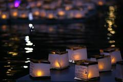 img_2114 (steevithak) Tags: toronagashi illuminateirving lascolinas canal lakecarolyn irving texas tx vivitar 200mm manualfocus