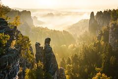 22953921876_4cbbaf49a9_o (brendonbarbosalima2016) Tags: basteigebiet deutschland elbsandstein herbst landscape landschaft nebel outdoor rathen sachsen sonnenaufgang schsischeschweiz