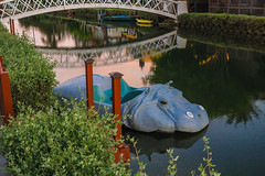 Hippos lurk (axi11a) Tags: lasocal losangeles venice venicebeach canal refelction dusk