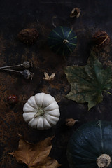 Autumn mood (esmeecadoni) Tags: europe netherlands beautifulearth leaves sony indoor simple simplicity minimal light littlethings minimalistic holland photography fall drenthe fadedglory autumn nature stilllife