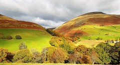 Autumn in the English Lakes (Paul Thackray) Tags: lakedistrictnationalpark englishlakedistrict lonscalefell bleasefell autumncolours 2016