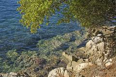 Clarity (hippyczich) Tags: sea rocks tree ithaca greece infocus highquality