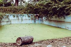 Then her envious heart had peace (sadandbeautiful (Sarah)) Tags: me woman female self selfportrait abandoned pool swimmingpool algae overgrown pennsylvania mansion