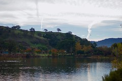 Lake Almaden Park and Los Alamitos Creek Trail (grendel7469) Tags: nature november fallfoliage lakealmaden almadenlake almaden sanjose southsanjoseca trails birds lake leaves chemtrails gull coot macoflower macro