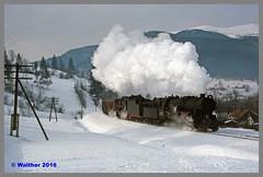 Ukraine 94 Winter_137aa (r_walther) Tags: baureihel baureihete breitspur dampflok dampflokomotive doppeltraktion dzherelo exbaureihe52 exdeutschereichsbahn lok5141 lok6115 stöckli ukraine ukrsalisnyzja umgespurt vorspann winter zakarpattia ukr