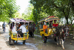 Rush Hour on the Island (HansPermana) Tags: lombok indonesia gilitrawangan island holiday trip travel relax traditional transportation horse chariot traffic rushhour trees green wet andong