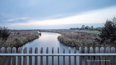 LE Onlanden Netherlands (Reina Smallenbroek) Tags: reinasmallenbroek le onlanden netherlands drenthe natuurmonumenten natuurbeheer landscape landschap water leebigstopper lee
