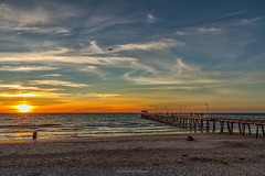 Flying to the Sunset (johnwilliamson4) Tags: adelaide aircraft beach blue clouds henleybeach jetty southauatralia southaustralia sunset water orange australia