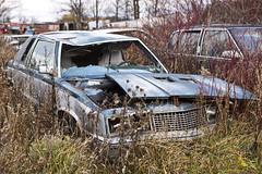 Shattered Dreams (cjb_photography) Tags: car junkyard mcleansautowreckers miltonon rust
