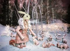Snow Bunnies (Spirit Eleonara) Tags: second life photography winter azoury chapter four bunnies anc half deer light shadow colour fantasy coco doll avatar