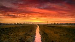 Local Sunrise (Tom Strawn) Tags: sunrice vibrant nikon d750 nikko 24120f4 fields stream landscape formatthitec graduated filters morning